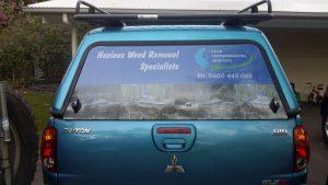 rear window signage Maroochydore